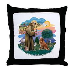 St Francis #2/ Novia Scotia Duck Throw Pillow
