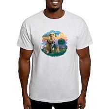 St Francis #2/ Lakeland T T-Shirt