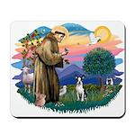 St Francis #2/ Boston T #1 Mousepad