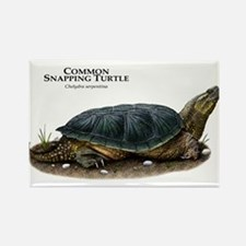 Common Snapping Turtle Rectangle Magnet