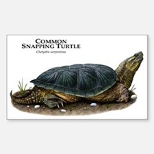 Common Snapping Turtle Decal