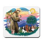 St Francis #2/ Cavaliers Mousepad