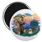 St Francis #2/ Cairn T (#14) Magnet