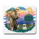 St Francis #2/ Cairn T (#14) Mousepad
