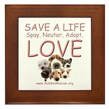 Spay Neuter Adopt - Framed Tile