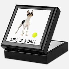Toy Fox Terrier Life Keepsake Box