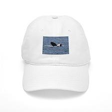 White Baseball Cap-Whale (Orca)
