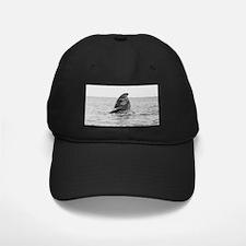 Black Cap-Whale (Gray)