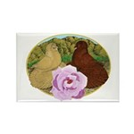 Trumpeter Pigeons and Rose Rectangle Magnet (100 p
