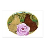 Trumpeter Pigeons and Rose Postcards (Package of 8