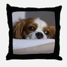 Cavalier King Charles Spaniel Throw Pillow