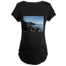Incline, Lake Tahoe T-Shirt