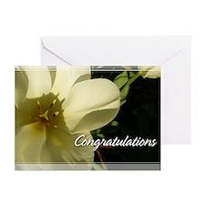 White Tulip Congratulations Cards 5x7 (Pk of 10)