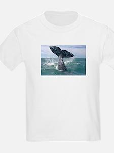 IMG_9024 T-Shirt