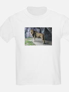 IMG_5366 T-Shirt