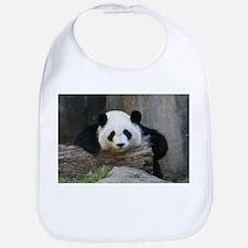 Funny Panda bear Bib
