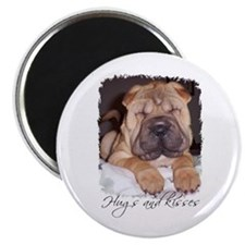 HUGS AND KISSES Magnet