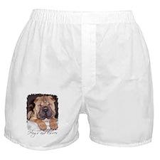 HUGS AND KISSES Boxer Shorts