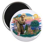 St Francis #2/ Bel Malanois Magnet