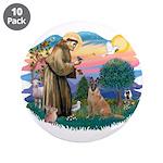 St Francis #2/ Bel Malanois 3.5