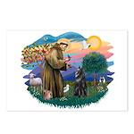 St Francis #2/ B Shepherd Postcards (Package of 8)