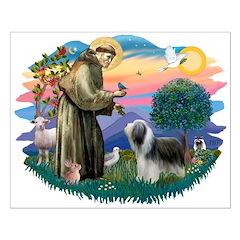 St Francis #2/ Beardie (sw) Posters