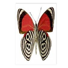 BUTTERFLY RED/BLACK Postcards (Package of 8)