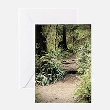 Lake Quinault Rainforest II- C Greeting Card