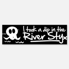 I Took a Dip in the River Styx Car Car Sticker