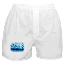 Indian Ice Sculpture Boxer Shorts
