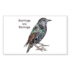 Starlings Are Darlings Decal