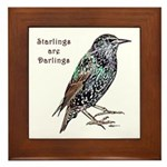 Starlings Are Darlings Framed Tile