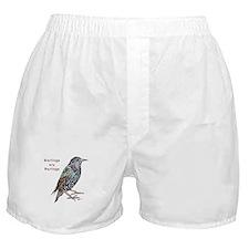 Starlings Are Darlings Boxer Shorts