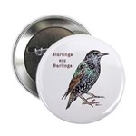 "Starlings Are Darlings 2.25"" Button (100 pack"