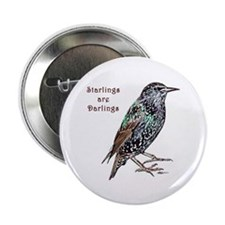 """Starlings Are Darlings 2.25"""" Button"""