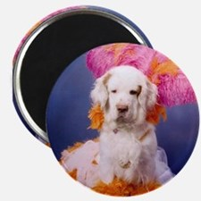 Clumber Spaniel Party Girl Magnet