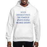 The Power Of Stupid People Hooded Sweatshirt