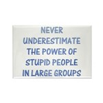 The Power Of Stupid People Rectangle Magnet (10 pa