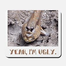 Yeah, I'm ugly. Mousepad