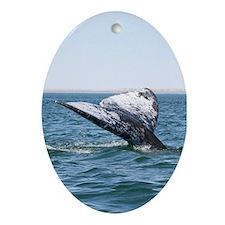 Ornament-Whale (Gray)
