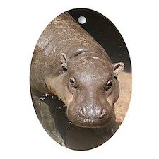 Ornament-Hippo