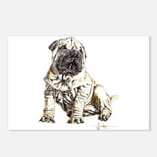 Funny Sharpei Postcards (Package of 8)