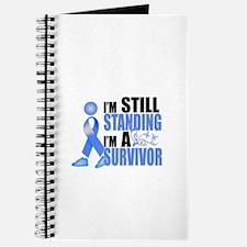 Still Standing I'm A Survivor Journal
