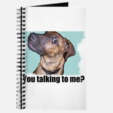 You talking to me? Journal