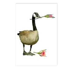Canada Goose With Rose Postcards (Package of 8)