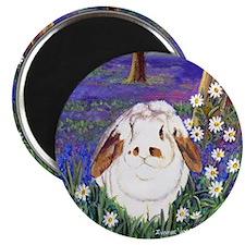 Horatio Lop Rabbit Magnet