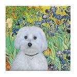 Irises / Maltaese (B) Tile Coaster