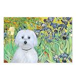 Irises / Maltaese (B) Postcards (Package of 8)