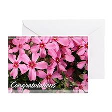 Pink Phlox Congratulations Card 5x7