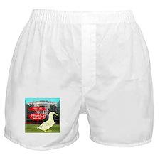 Obama Ain't No Nazi Boxer Shorts